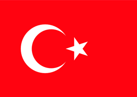 Груз 200 в Турцию